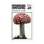Amanita Mushroom Stamp