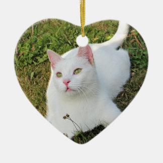 Amante animal bilateral del ornamento del corazón ornamente de reyes