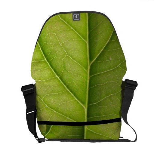 Amante de naturaleza verde de la hoja bolsas messenger