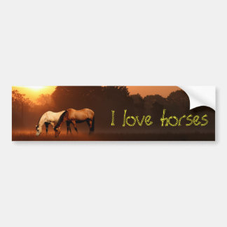 Amante del caballo pegatina de parachoque
