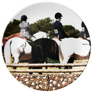 Amante del caballo platos de cerámica