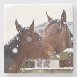 Amante del caballo posavasos de piedra