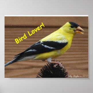 amante del pájaro póster