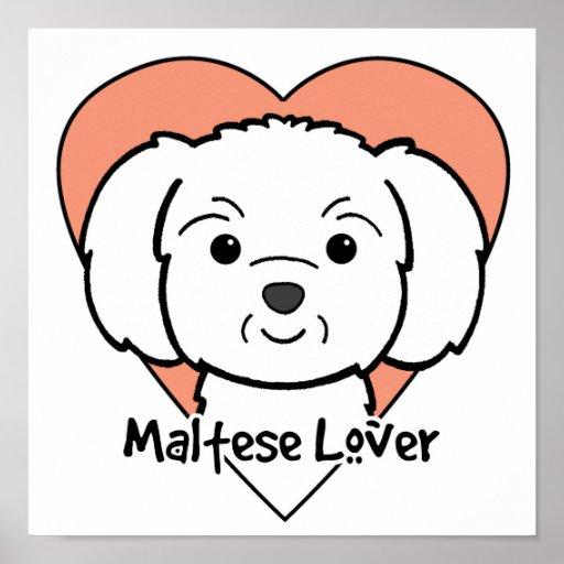 Amante maltés póster