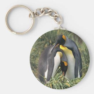 Amantes de los pingüinos de rey llavero personalizado