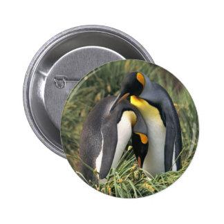 Amantes de los pingüinos de rey pin redondo de 2 pulgadas