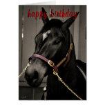 Amantes del caballo de la tarjeta de cumpleaños de