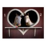 Amantes del caballo postal