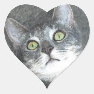 Amantes del gato pegatina en forma de corazón