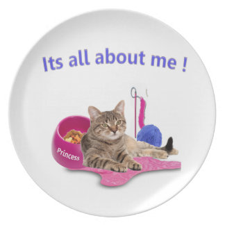 Amantes del gato platos para fiestas