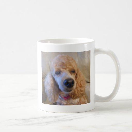 Amantes del mascota del caniche taza