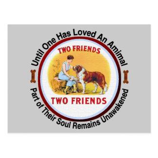 Amantes del perro y del mascota de St Bernard Postal