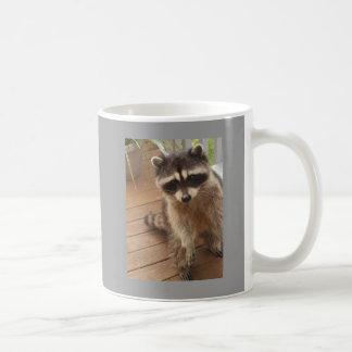 Amantes del Racoon Taza De Café