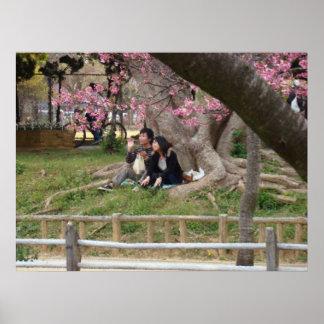 Amantes en primavera póster
