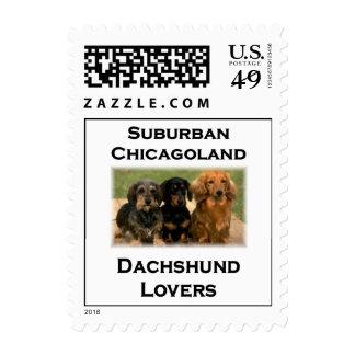 Amantes suburbanos del Dachshund de Chicagoland Envio