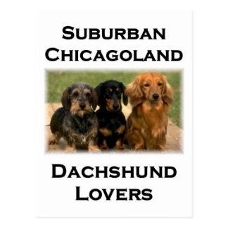 Amantes suburbanos del Dachshund de Chicagoland Postales