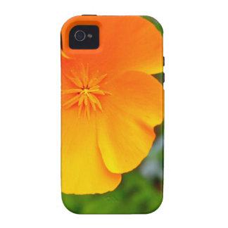 Amapola anaranjada iPhone 4/4S carcasa