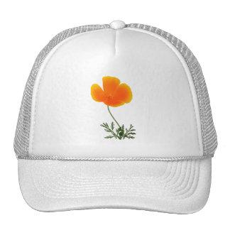 amapola anaranjada gorras