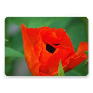 Amapola anaranjada vibrante invitación personalizada