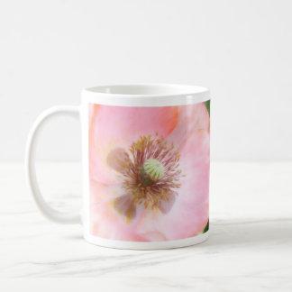 Amapola anual coloreada melocotón tazas de café