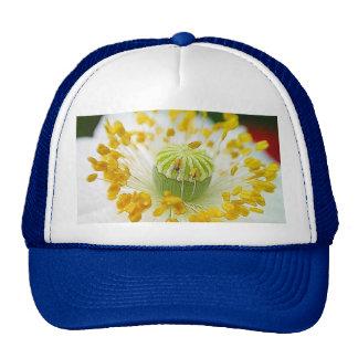 Amapola blanca delicada gorra