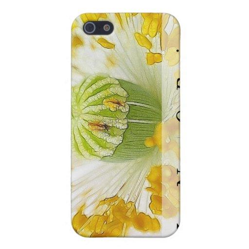 Amapola blanca delicada iPhone 5 cárcasas