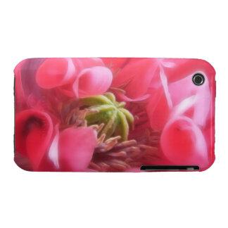 Amapola de Breadseed - Papaver - somniferum iPhone 3 Carcasa