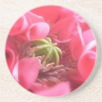 Amapola de Breadseed - Papaver - somniferum Posavasos Personalizados