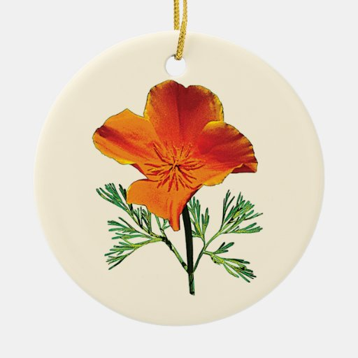 Amapola de California anaranjada Ornamento De Reyes Magos