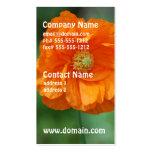 Amapola de California anaranjada Plantilla De Tarjeta De Negocio