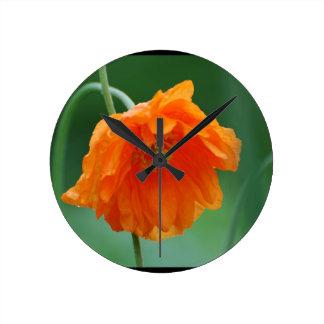 Amapola de California floreciente Reloj Redondo Mediano