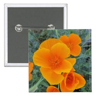 Amapola de California Pin