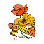 Amapola de California Tarjetas Postales