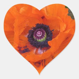 Amapola de jardín oriental pegatina en forma de corazón