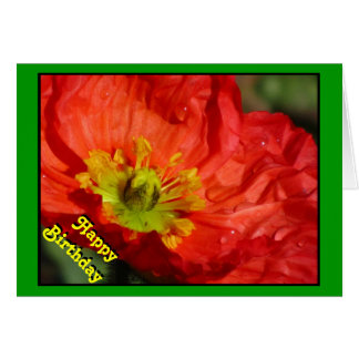 Amapola de maíz del Rojo-Naranja del feliz Tarjeta De Felicitación
