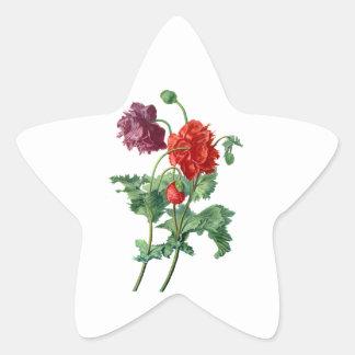 Amapola de opio extraída de la naturaleza por Van Pegatina En Forma De Estrella