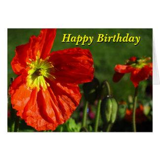 Amapola del Rojo-Naranja del feliz cumpleaños Tarjeta De Felicitación