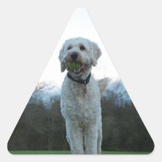 Amapola el perro del labradoodle pegatina triangular