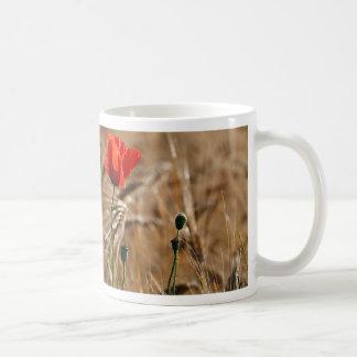 Amapola en un campo de maíz taza de café