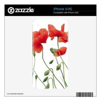 amapola-flor calcomanías para el iPhone 4