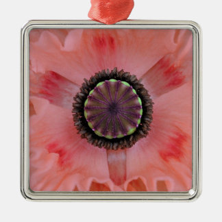 Amapola frilled rosada bonita adorno navideño cuadrado de metal