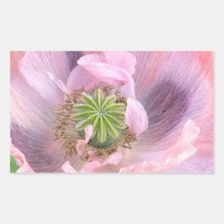Amapola oriental rosada pegatina rectangular