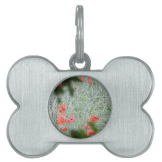 amapola placa mascota