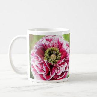 Amapola rizada - color de rosa rico taza de café
