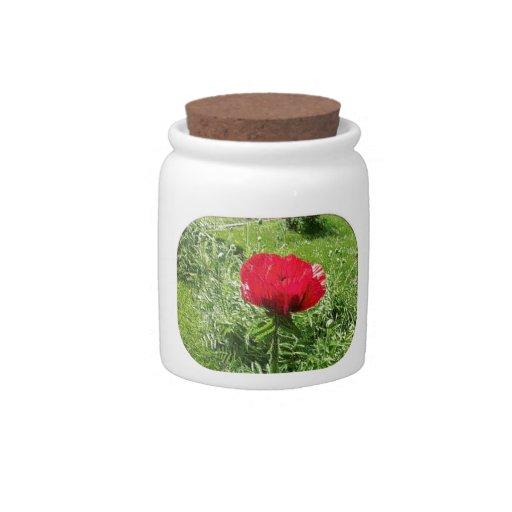 Amapola roja del plástico suave jarra para caramelo