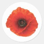 Amapola roja etiqueta redonda