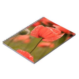 Amapola roja cuaderno