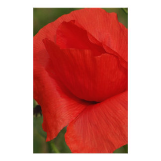 Amapola roja papelería personalizada