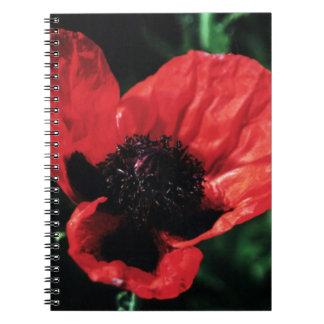 Amapola roja parecida al papel libretas