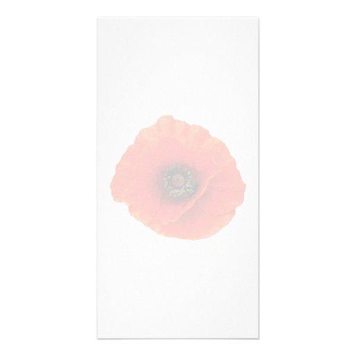 Amapola roja tarjetas fotograficas personalizadas